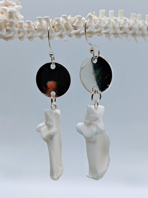 Armadillo Tarsal Earrings with Circle Connector