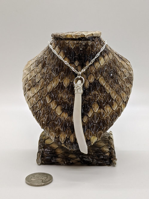 """Wild Boar Tooth Wrapped 18"""" 925 Silver Plated Chain"""