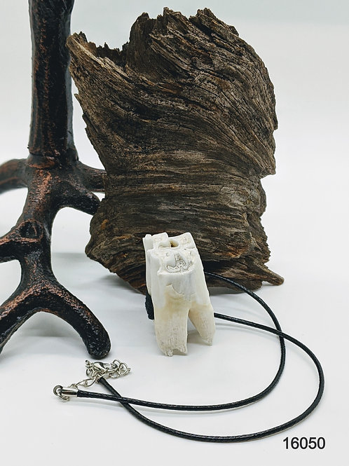 Cow Tooth Necklace