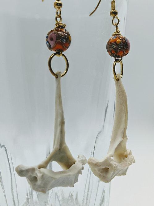 Armadillo Thoracic Vertebrae Earrings w/Orange Bead