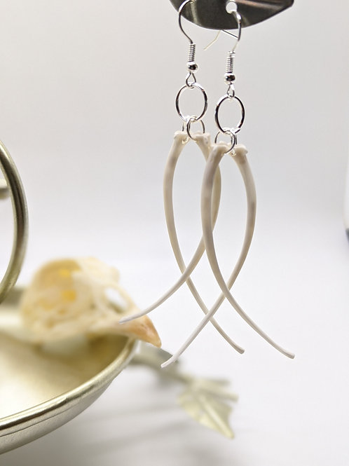 Burmese Python Rib Earrings (simple)