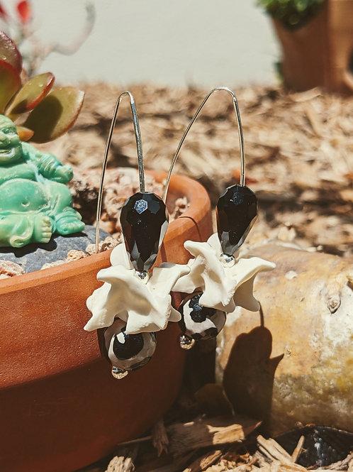 Burmese Python Vertebrae Earrings