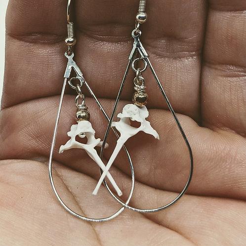 Rabbit Thoracic Vertebrae in Teardrop Earrings