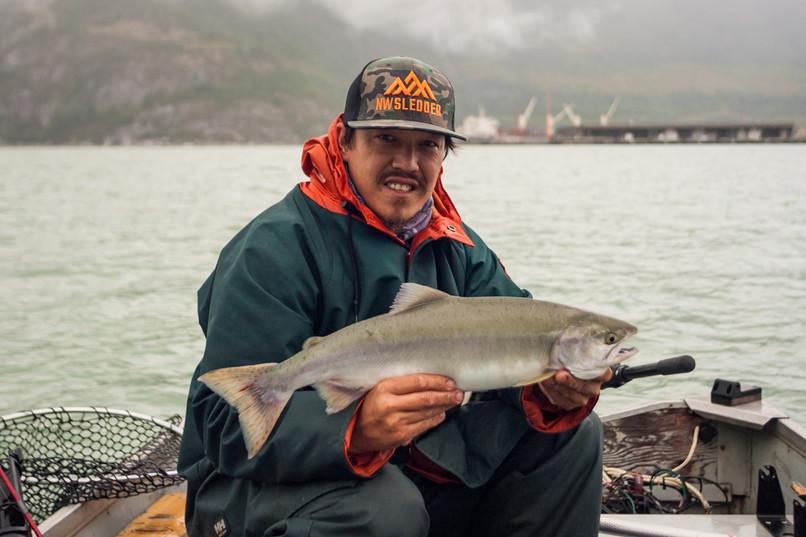 Pink Salmon Howe Sound