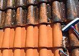 PeintuRenov démousage toiture Nantes nettoyage entreprise