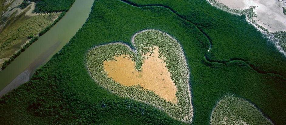 Yann Arthus-Bertrand, un photographe écolo