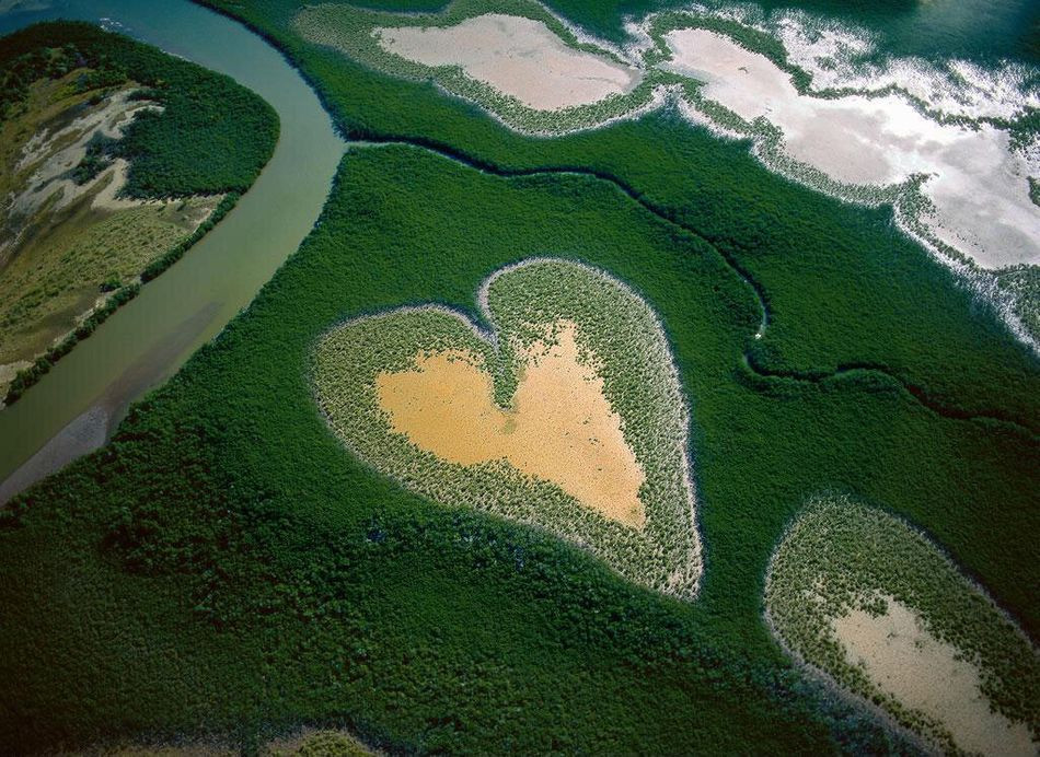 photographe yann arthus bertrand interview biographie