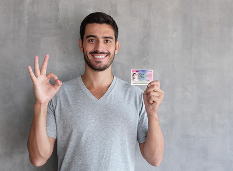 Residence permits in the EU : statistics and motivation