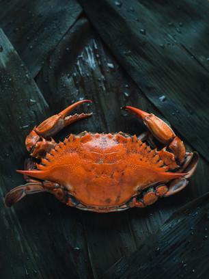 fruits de mer crabe