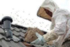 destruction nid frelons asiatique meaux 77 coulommiers boutigny