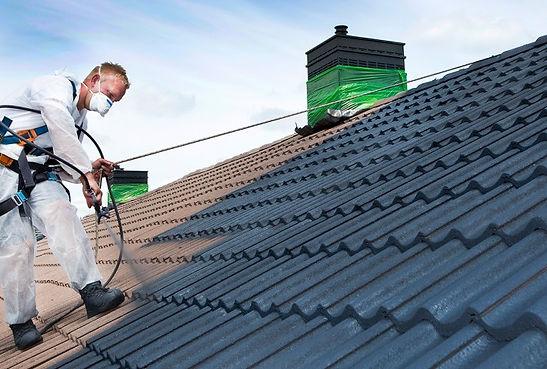 Clean Toiture Protect entreprise de démoussage toiture