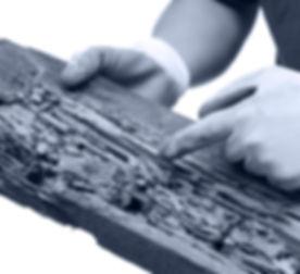 traitement de charpente à montauban