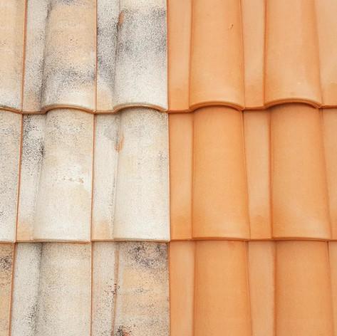 Nettoyage de toiture 78