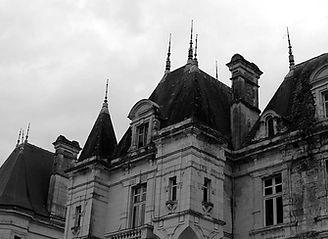 artisan ornemaniste zinc chateau , paris , ile de france, pays de la loire,angers, tours, le mans