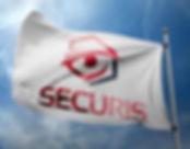 SECURIS FRANCE entreprise de sécurité privée