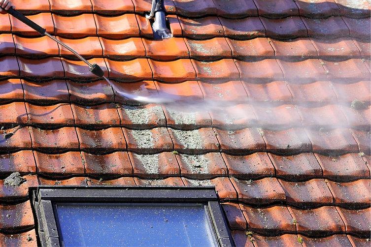 démoussage de toiture 78 saint germain en laye