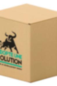 Carton de déménagement à Villejuif