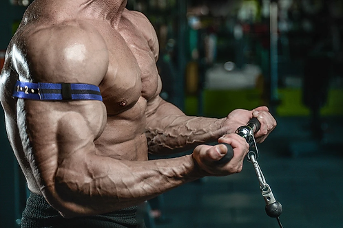 Increase Muscle Size/Growth Therapy