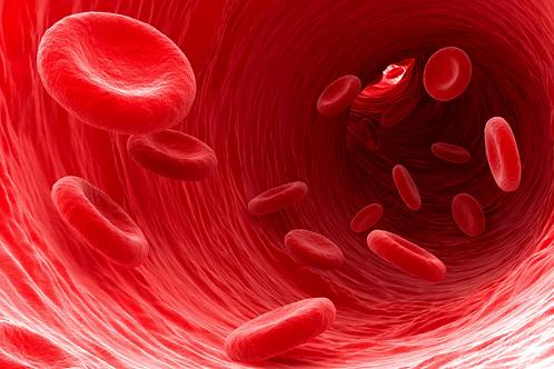 Testosterone Monitoring Blood Test
