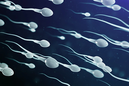 Improve Sperm Motility Red/Infrared Light Therapy