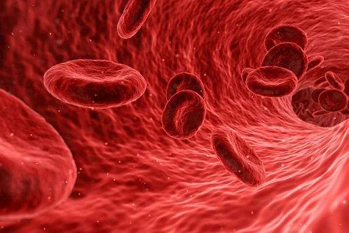 Better Blood Flow & Blood Cirulation