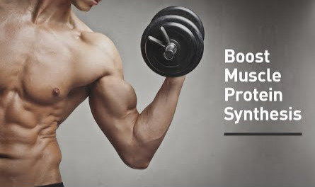 Stimulated Muscle Protien Synthesis Therapy