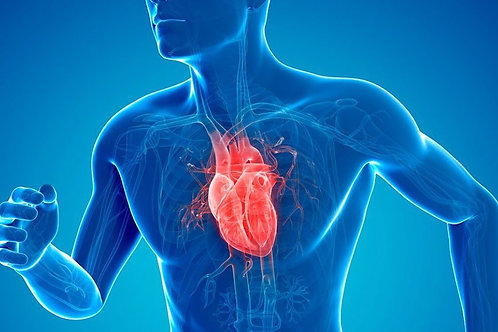 Healthy Heart Infrared Sauna Therapy