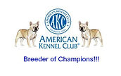 Bullworth French Bulldogs is an AKC Breeder Of Merit