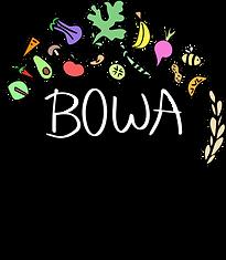 bowa_v4.png