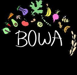 bowa_v4_edited.png