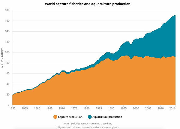 World Capture and aquaculture production