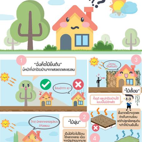 เคล็ดลับหมอบ้าน #05 : เลือกต้นไม้ให้เหมาะกับบ้าน