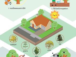 เคล็ดลับหมอบ้าน #04 : เลือกพันธุ์ไม้ให้เหมาะกับสวน