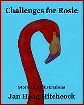Challenges for Rosie