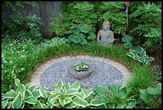 garden, meditation