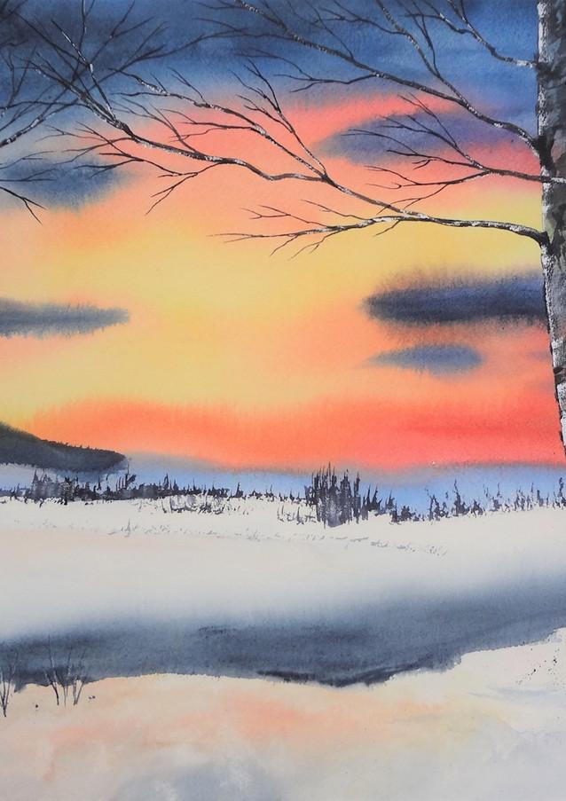 Les couleurs de l'hiver