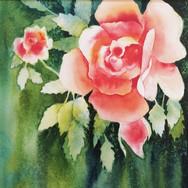 La reine rose