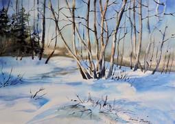 Kiwanis en hiver