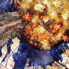 Fleurs et cactus