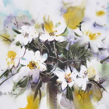 Coquettes fleurettes