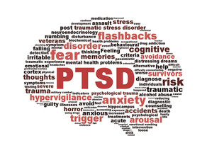 What are the Causes of PTSD?