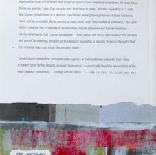 """""""Catchment Area"""" poetry book, back cover"""