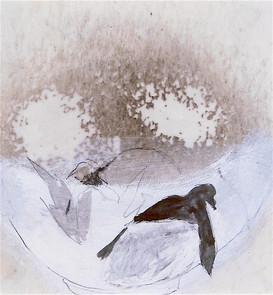 Vincent's nest