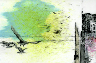 flight, in the 4pm autumn sun