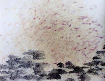 violet birds like fireworks