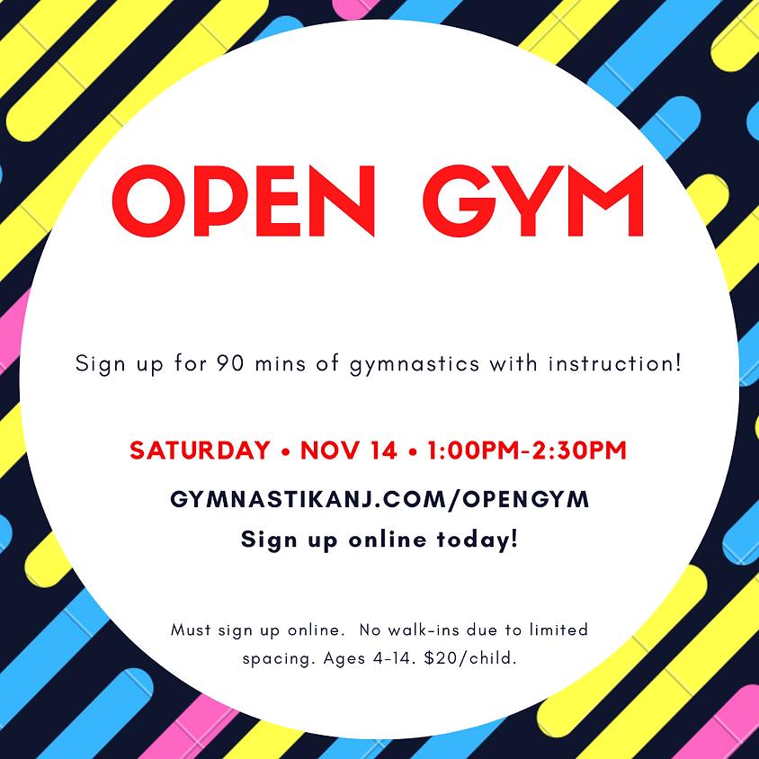 Open Gym:  Saturday, November 14th