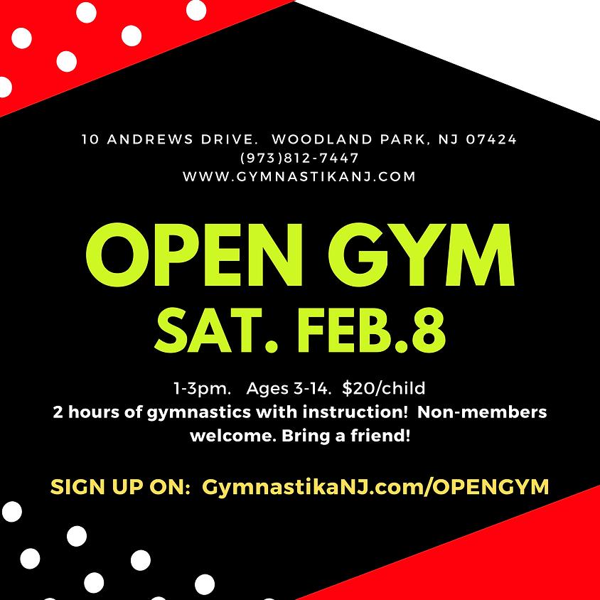 Open Gym:  Saturday, February 8th