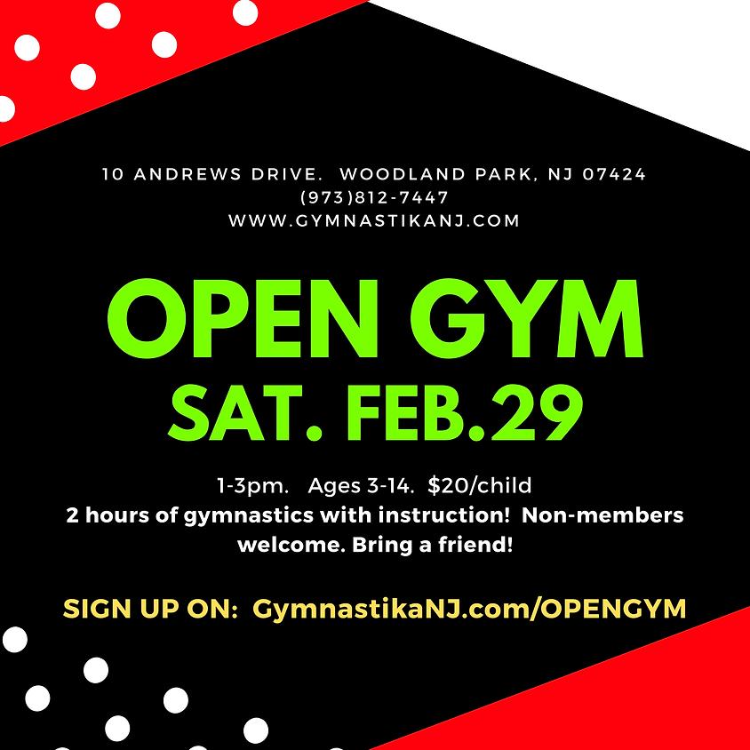 Open Gym:  Saturday, February 29th!