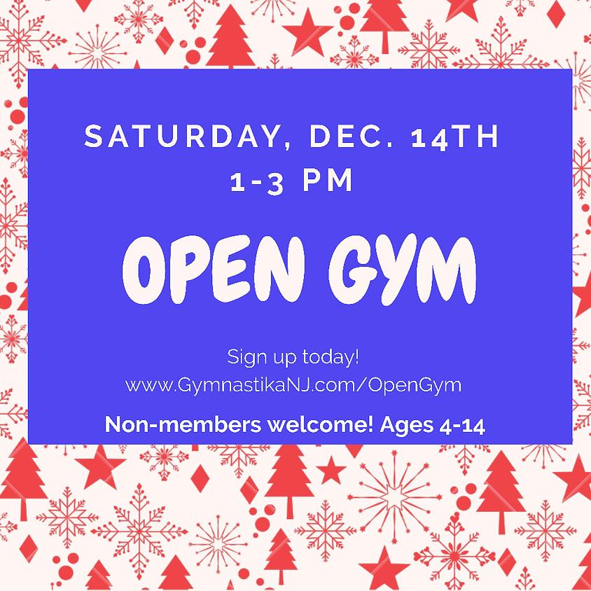 Open Gym:  Saturday, December 14th