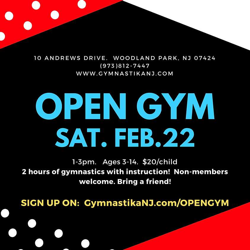 Open Gym:  Saturday, February 22nd!